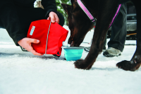 Voyager Dog Canteen Water Carrier