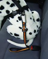 Autogurt Direct to Seatbelt Tether