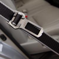 Leash to Seatbelt Buckle